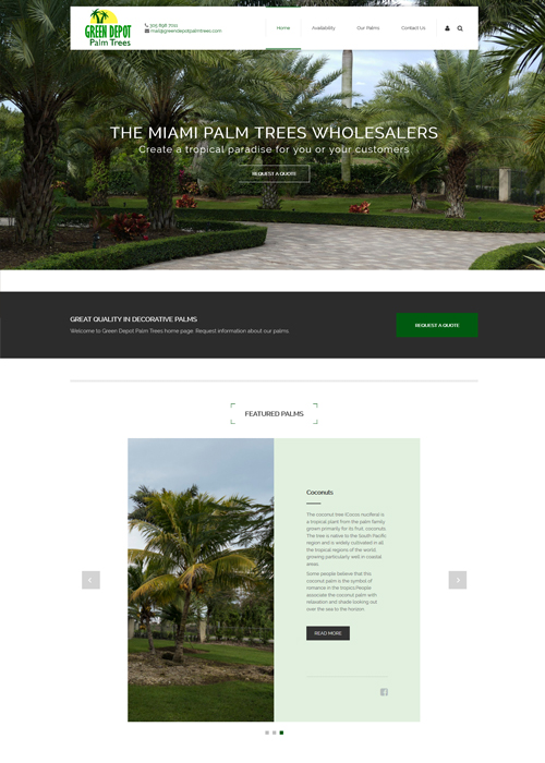 Miami Web Design